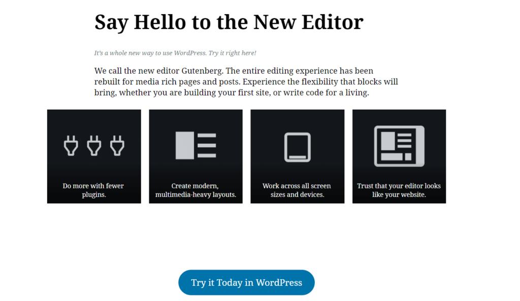 WordPress Gutenberg SEO